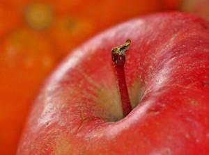 Gesunder roter Apfel