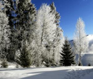 Abnehmen im Winter